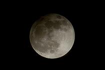 名月を愛でる夜